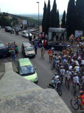 Ciclismo, disputata la Coppa Città di Corciano - 1° Memorial Sestilio Pioppi 6