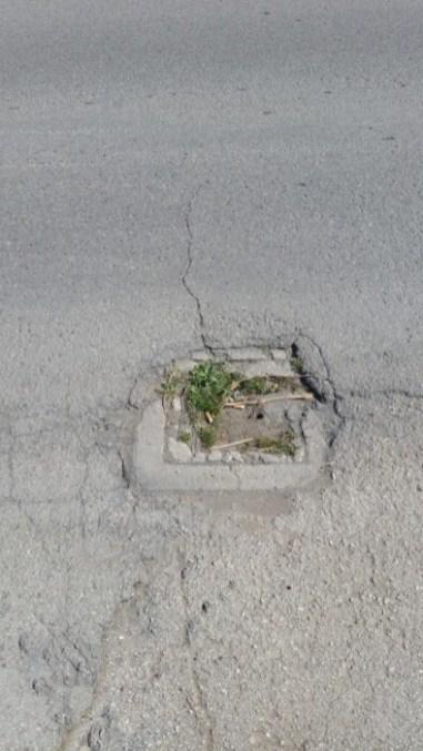 Degrado e pericolo sulle strade: i cittadini di Capocavallo attendono risposte 2
