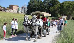 """In """"Bici con Bacco"""": successo per la seconda edizione organizzata da L'Abbraccio 1"""