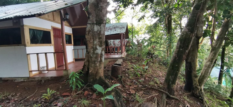 cabins14