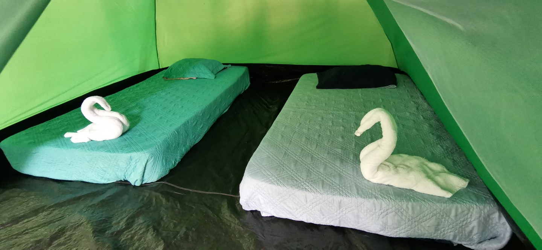 hostel61