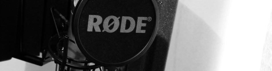 Condenser_Microphone_with_Pop_Filter_and_Reflection_Filter