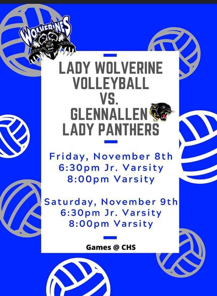 Lady Wolverine VolleyBall