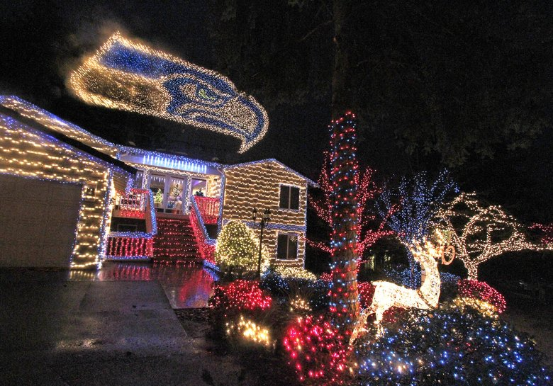Seahawks Christmas Lights