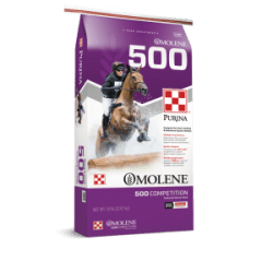 Equine Feed :: CORE FEED