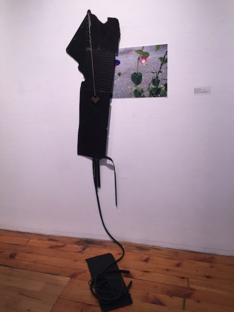 Textured black pieces of rubber hang from the wall to the floor. A small piece of metal hangs on a cord on top of the rubber. A archival photo of pink flowers with green leaves grows is in the foreground against grey concrete.