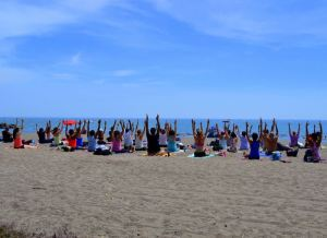 Frantastic Yoga on the Beach at Woodbine. Photo: Leigh Nelson
