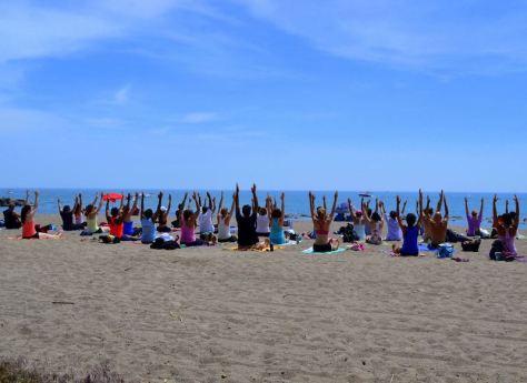 Frantastic Yoga on the Beach at Woodbine. Photo: Leigh Nelson
