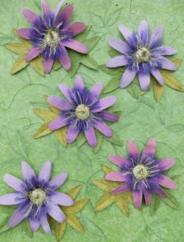 Passion Flower Wallpaper Sample - 'Gardens and Flowers', Harlow Carr 2014