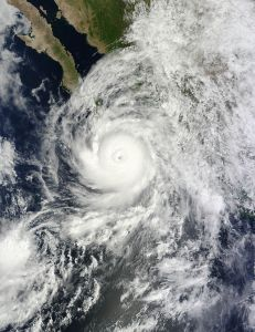 Hurricane Odile in the Pacific