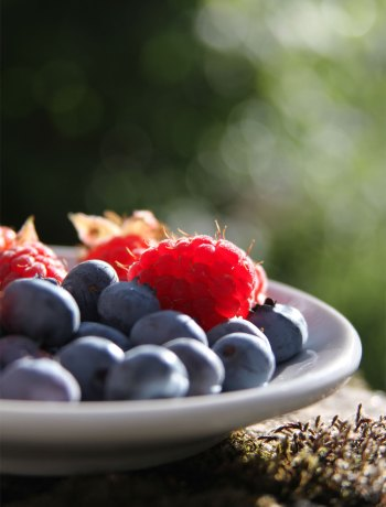 Mixed berries with Kirsch