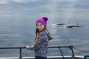 Whale watching is a fantastic experience for all ages
