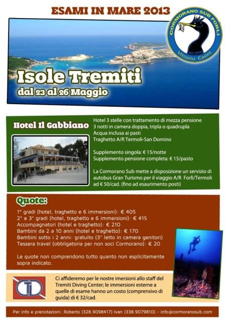 Volantino_Tremiti_2013_small