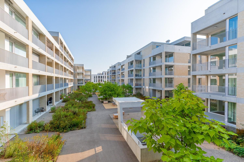 Immobiliendokumentation Baufeld Suhr