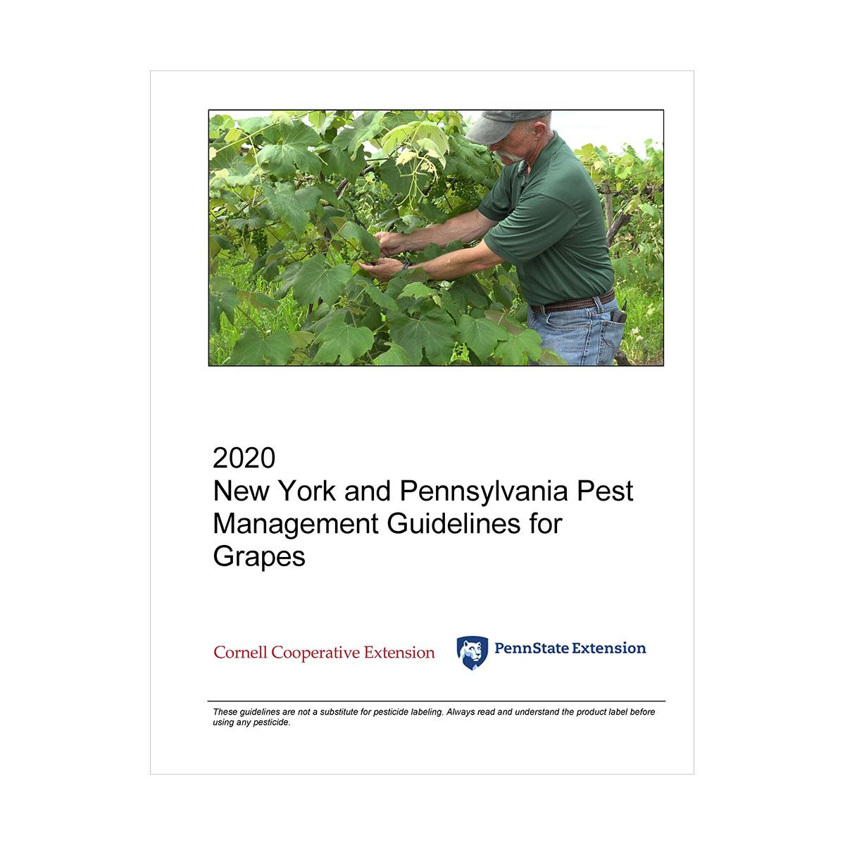 Pmep Guide For Ny And Pa Gmgmt