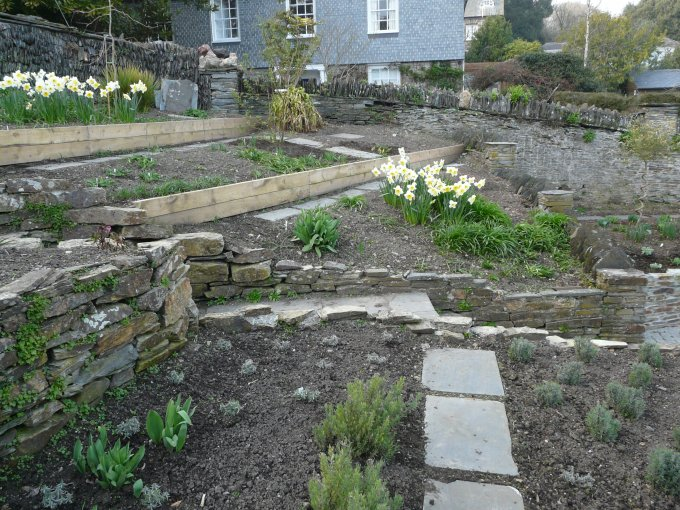 Planting, Padstow