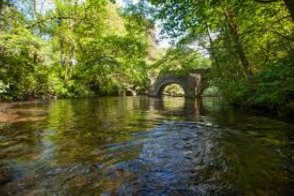 Fowey River Hire
