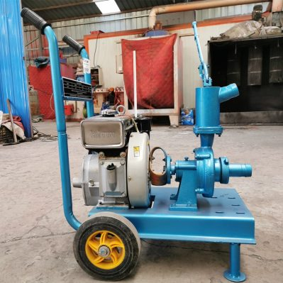 movable irrigation pump