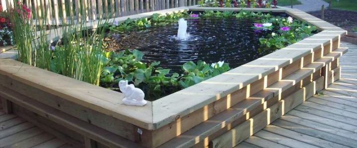 Tips for creating a garden fish pond