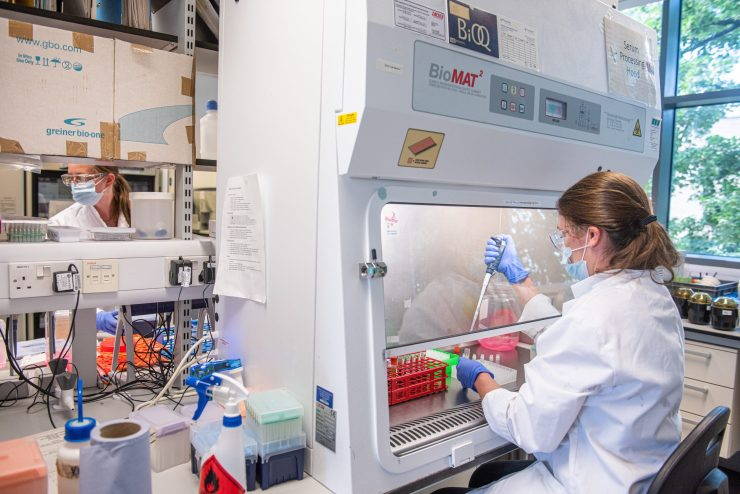 A woman scientist sat in a lab using a pipette behind a protective screen.