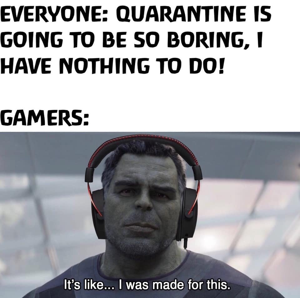 Everyone Quarantine is going to be so boring – Gamers Its like i was made for this