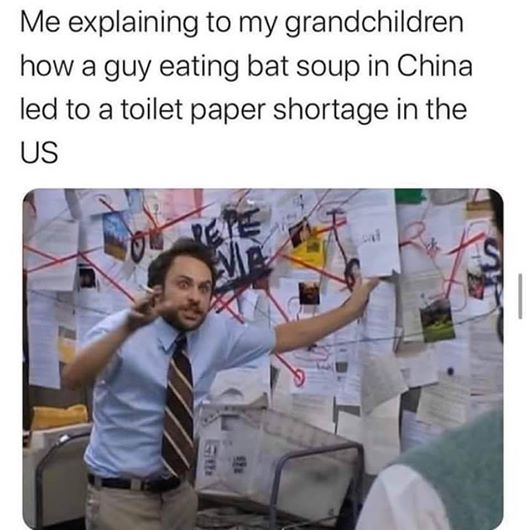Me explaining to my grandchildren how a guy eating bat soup in China led to a toilet paper shortage in the USA