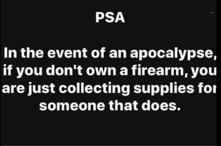 PSA – In the event of an apocolypse if you don't own a firearm – you are just collecting supplies for someone that does