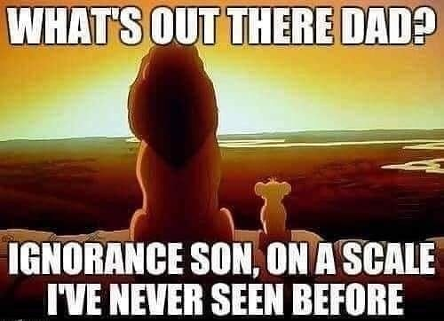 Whats out there dad Ignorance son on a scale we have never seen before