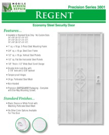 Economy Steel Security Door