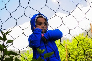 little child in blue coat hanging on wired fence looking bored