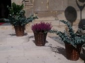 02-boda-rociera-castro-del-rio-coro-rociero-la-borriquita-decoracion-florar-iglesia