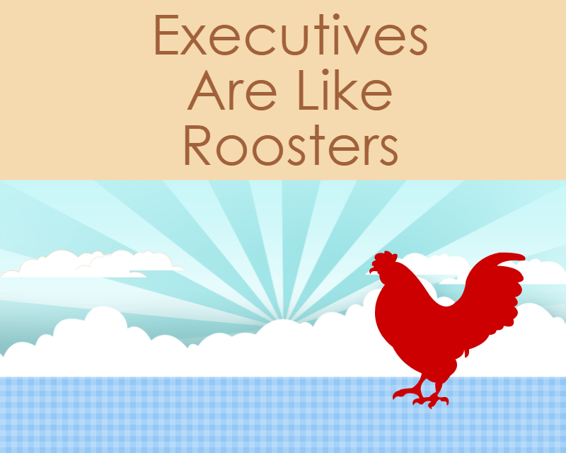 Executives Are Roosters. The Stealth Millionaire Is Not