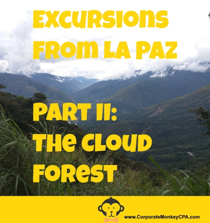 Excursions From La Paz The Cloud Forest