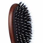 PLISSON Brosse à Cheveux Pneumatique Chardon Grand Modèle 100% Sanglier