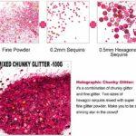 JEMESI Paillettes de Corps, Maquillage Paillettes Set Glitter pour Halloween, Noël, Cosmétiques Brillants pour Visage, Ongles, Corps, Cheveux, Yeux Lèvres (Rose Rouge)