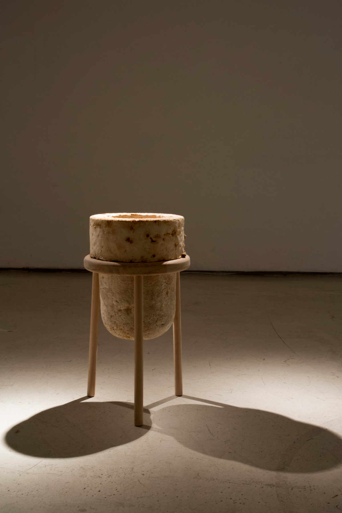 17.The Future of Plastic ©Officina Corpuscoli | Maurizio Montalti - Vase #3 - Mycelium Vase on Wood Stand