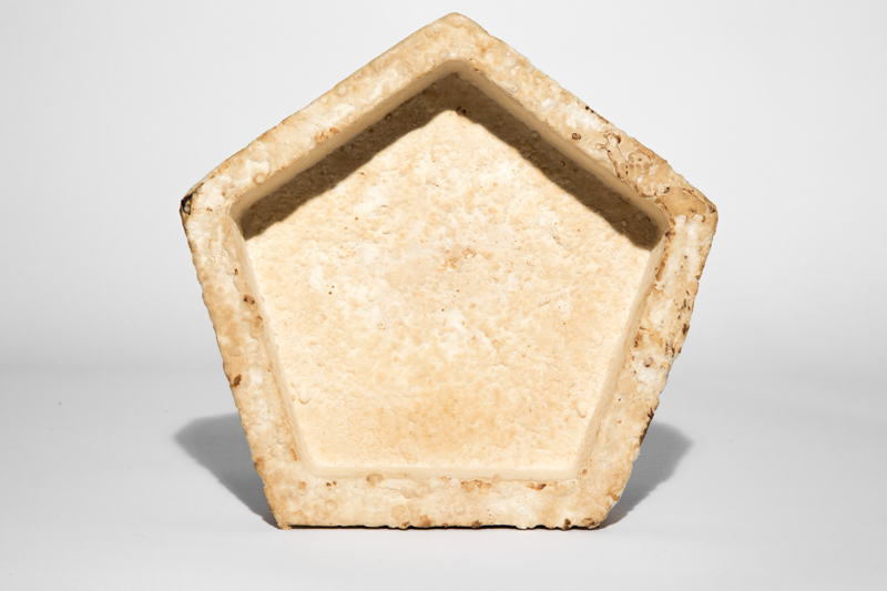The Growing Lab - Mycelia ©Officina Corpuscoli | Maurizio Montalti - mycelium plate pentagonal2