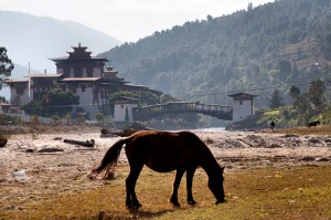 bhutan 079
