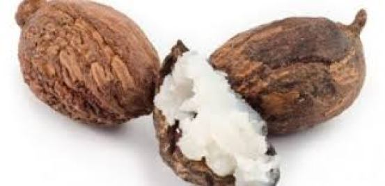 Raw shea butter for hair growth: benefits and usage
