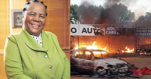 Many Nigerians in South Africa are drug dealers – Foreign Affairs Minister, Naledi Pandor says (video)