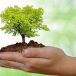 Surubim recebe seminário sobre política de educação ambiental de Pernambuco