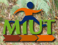 MIUT – Madeira Island Ultra Trail