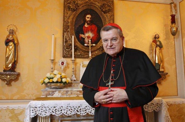 Le Cardinal Burke : « Face à l'islam l'angoisse ressentie est justifiée.  L'Islam dans sa dimension politique a l'ambition de gouverner le monde. » |  Correspondance européenne