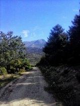 carrera nocturna de Navacerrada
