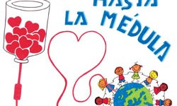 donación de médula