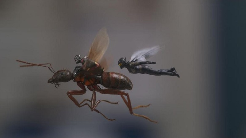 Marvel Studios' ANT-MAN AND THE WASP | Who Is The Wasp? – Featurette