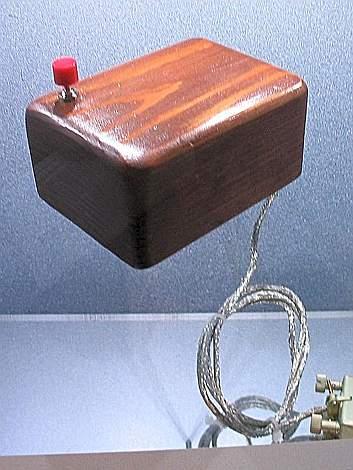 Il primo mouse, inventato da Douglas Engelbart e Bill English, era stato chiamato «Bug», ed era di legno (da Internet)
