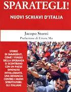 La copertina del saggio di Jacopo Storni