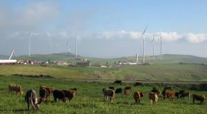 Una riproduzione di come sarebbe stato il Campo eolico con 17 torri
