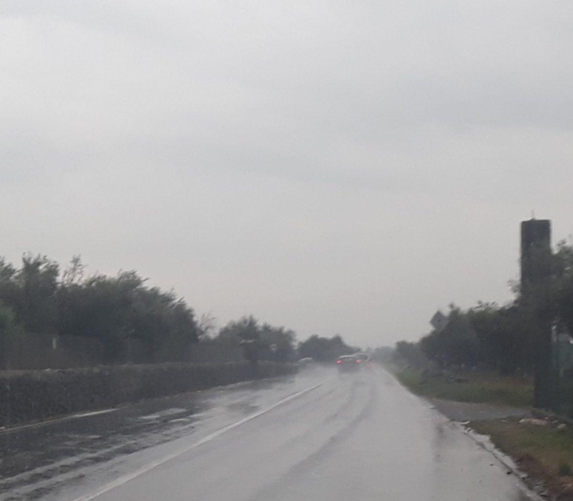 Incidente sulla SS.121 in territorio di Biancavilla: automobilista adranita investe mucca